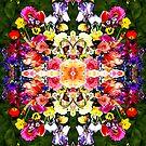 Flower Garden Fractal Waltz by Rebecca Tripp