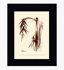 Huntington Gardens Plein Air Bamboo Drawing #1 Photographic Print