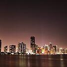 Dowtown Miami by Michael Dunn