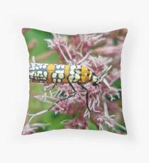 Ailanthus Webworm Moth - Atteva punctella Throw Pillow