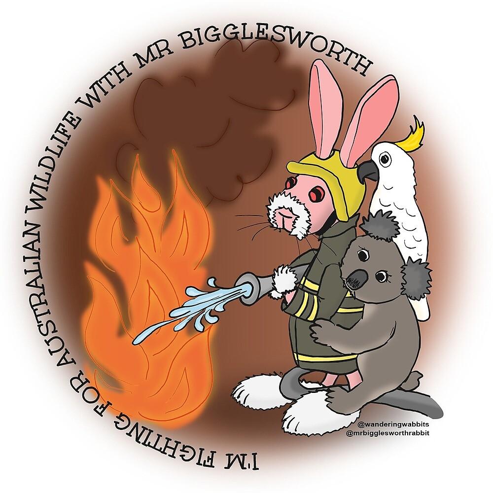 Mr Bigglesworth - Helping the Australian Wildlife in the Bushfires by mrbigglesworth