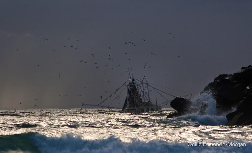 Tweed Trawlers #3 by Odille Esmonde-Morgan