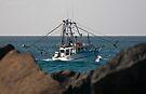 Tweed Trawlers #4 - Seaview by Odille Esmonde-Morgan