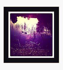 dusk lake Photographic Print