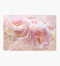 Pastel Pink Photographic Print