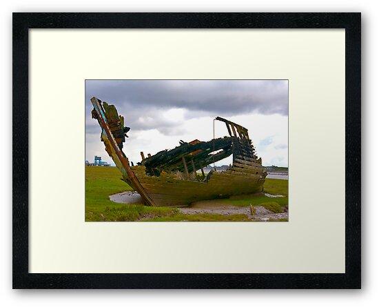 On The Marsh by Trevor Kersley