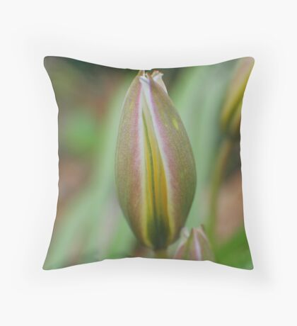 Tulip in Waiting Throw Pillow