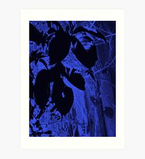 Disco Leaves ... Art Print