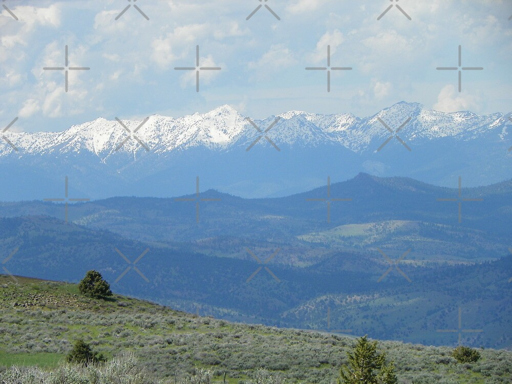 View of the Elkhorn Mountains by Betty  Town Duncan