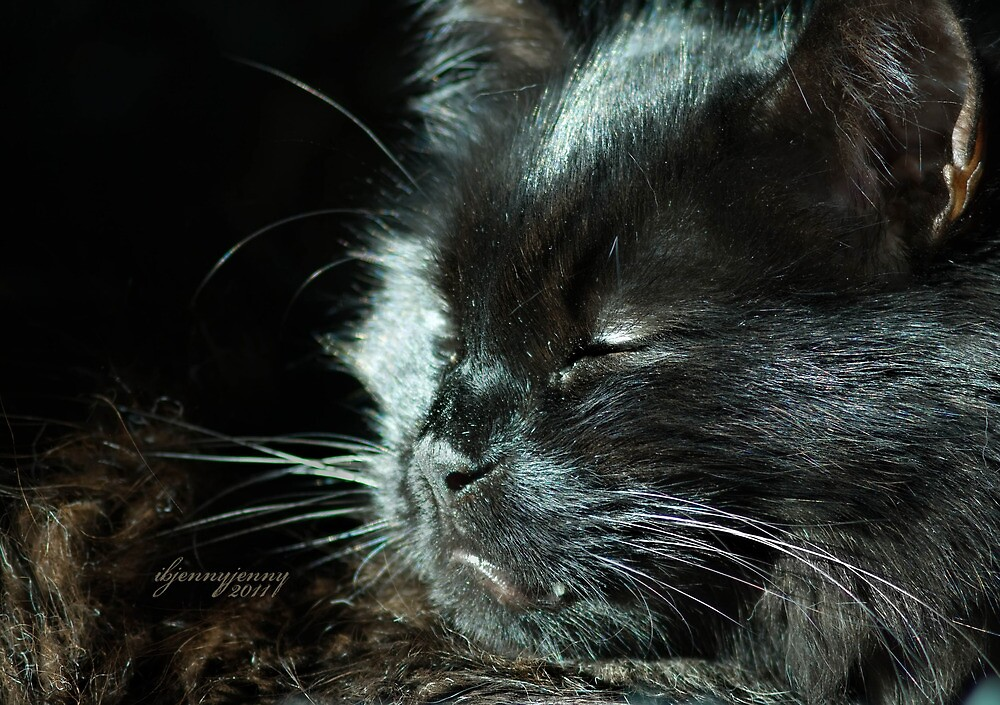 Sleepy Roo Face by ibjennyjenny
