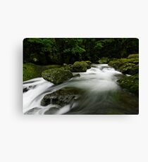 Lamington Flows Canvas Print