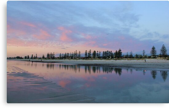 Pine Tree Sunset Reflection by Amy Dee