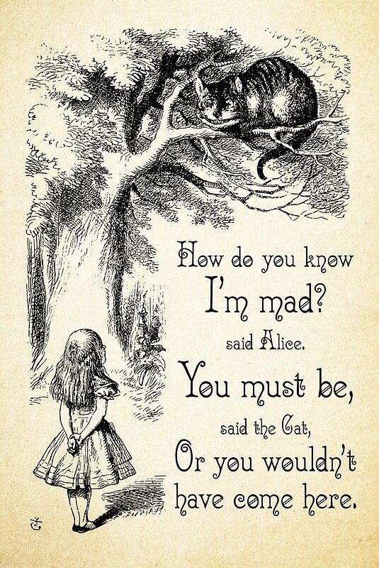 Alice In Wonderland Quote Stunning Alice In Wonderland Quote  How Do You Know I'm Mad  Cheshire Cat