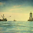 Safe Harbor by Suzanne Cummings