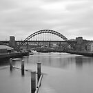 The Bridges by Philip  Whittaker