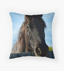 Damn Fence Throw Pillow