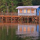 Fish Camp by Maurie Alderson