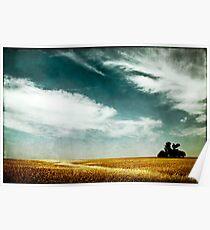 tree, sky and horizon Poster