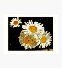 Daisy Photoart Art Print