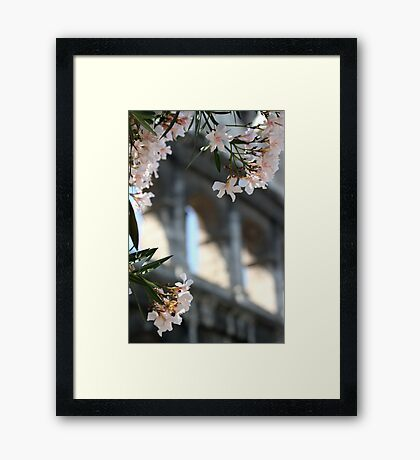 Flowers and Arches Framed Print