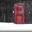 Red Door by Sheryl Gerhard