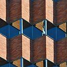 windows by Bob Hortman