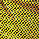 Mesh in Blue and Yellow by DearMsWildOne