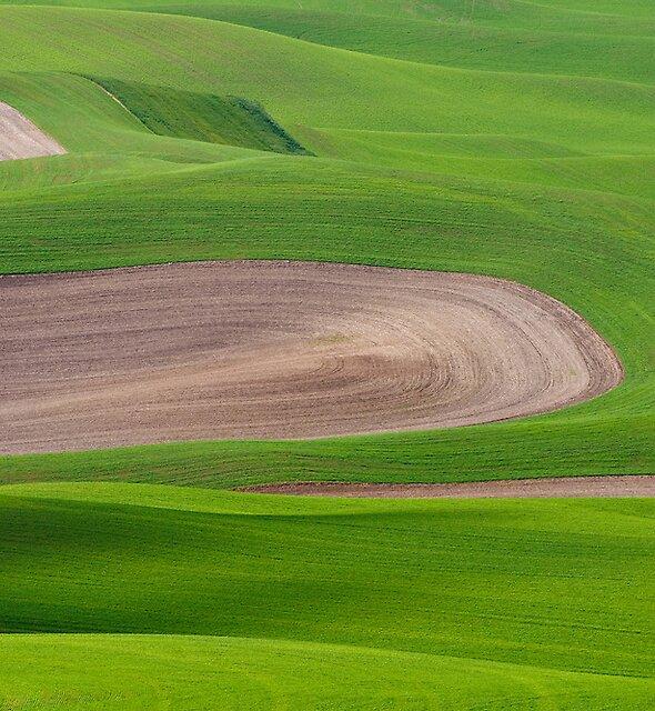 Nature's melting pot by Dan Mihai