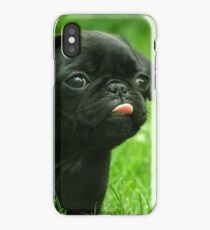 Black Pug iPhone Case