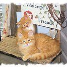 Welcome Kitties by teresa731
