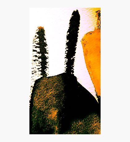 scorched peak....charred cactus  Photographic Print