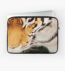 Tiger at the Bear Park; Live and Up Close Laptop Sleeve