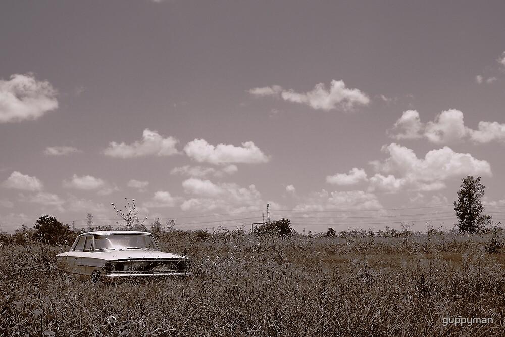 Summer Rustin' by guppyman