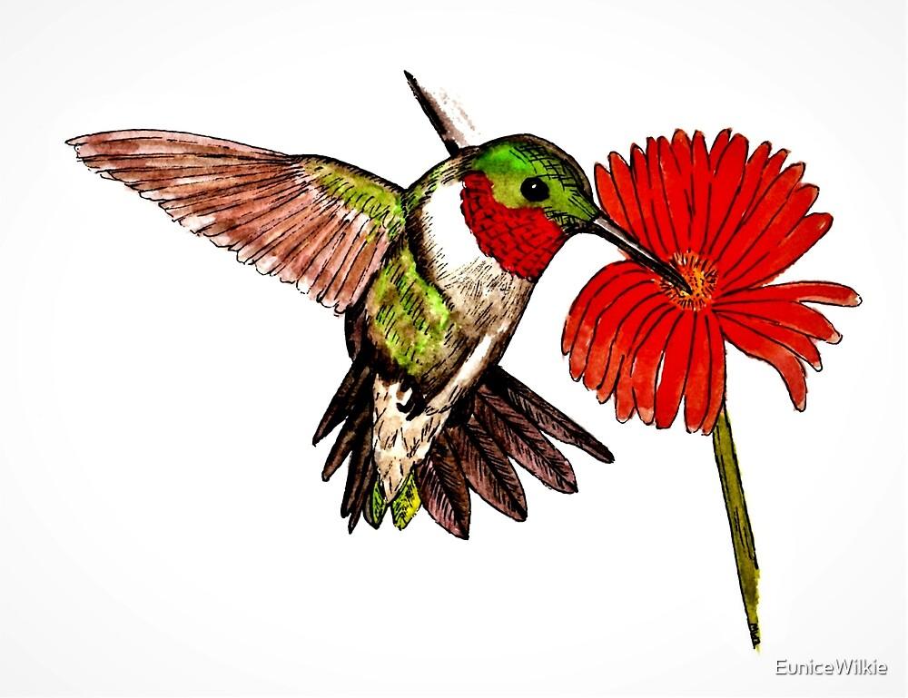 Humming Bird and Flower - Coasters & Blocks by EuniceWilkie