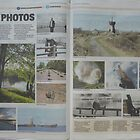 My pictures in the paper by Tony Blakie