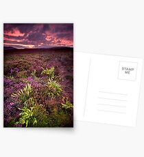 The Dimming of the Day Postcards