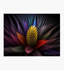 Spiky Botanical Photographic Print