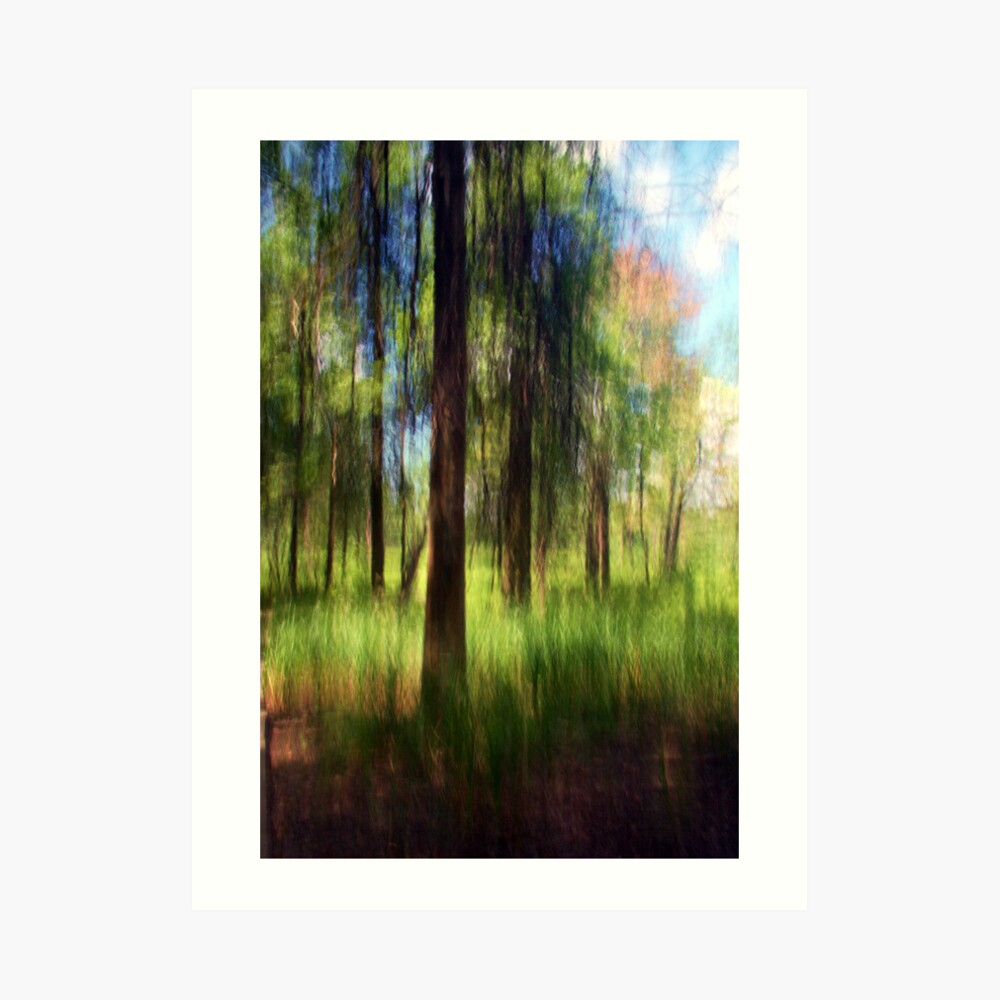 An Early Summer Afternoon Art Print