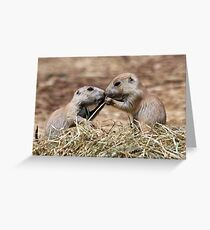 if i kiss you, would you share that sis .............. Greeting Card