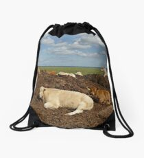 A Place of Rest Drawstring Bag
