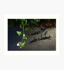 Even a Weed Can Be a Pretty Picture Art Print