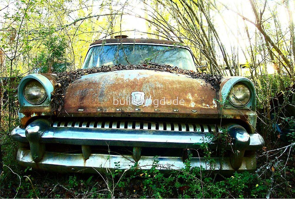 Sad old Mercury  by bulldawgdude