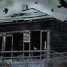 bird house by sbc7