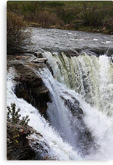 Lundbreck Falls by Alyce Taylor
