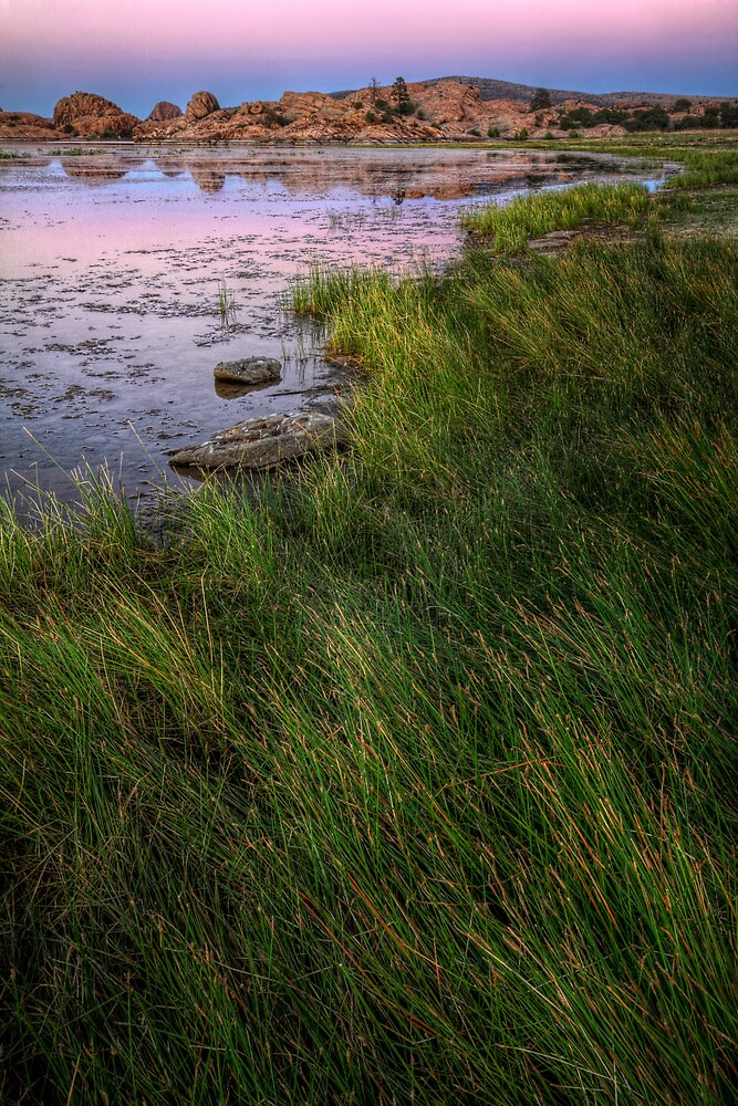 Twilight and Grass by Bob Larson