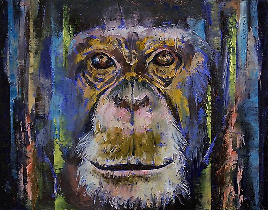 Chimpanzee by Michael Creese