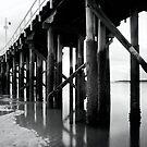 Urangan Pier by Kym Howard