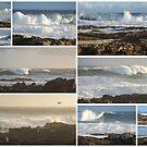 Winter in the Western Cape South Africa - Winter in die Weskaap Suid Afrika by Karlientjie