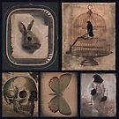 Odd Collection by gothicolors