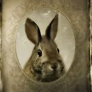 Portrait Of A Rabbit by gothicolors